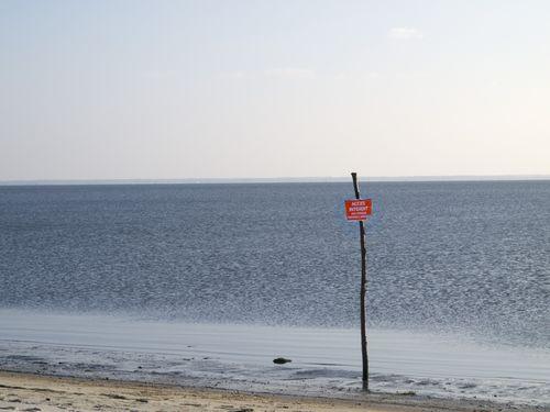 2010-02-10-16-39-40